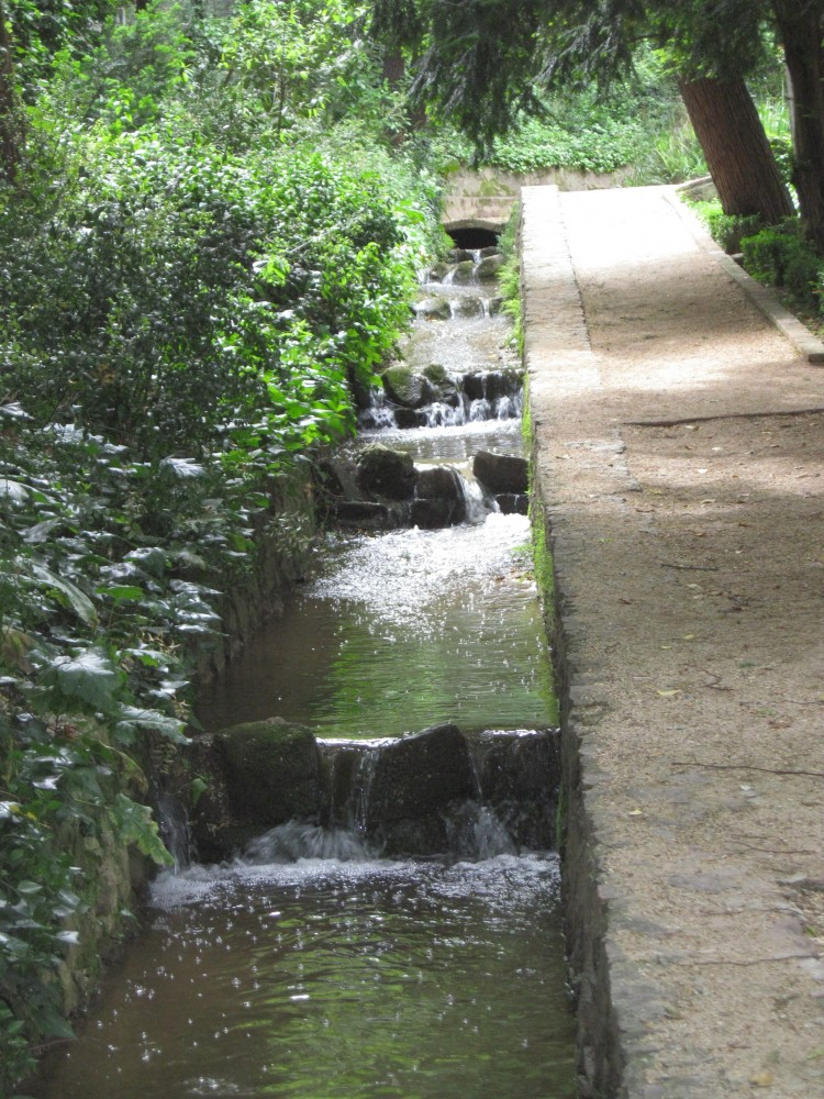 The ravine stream