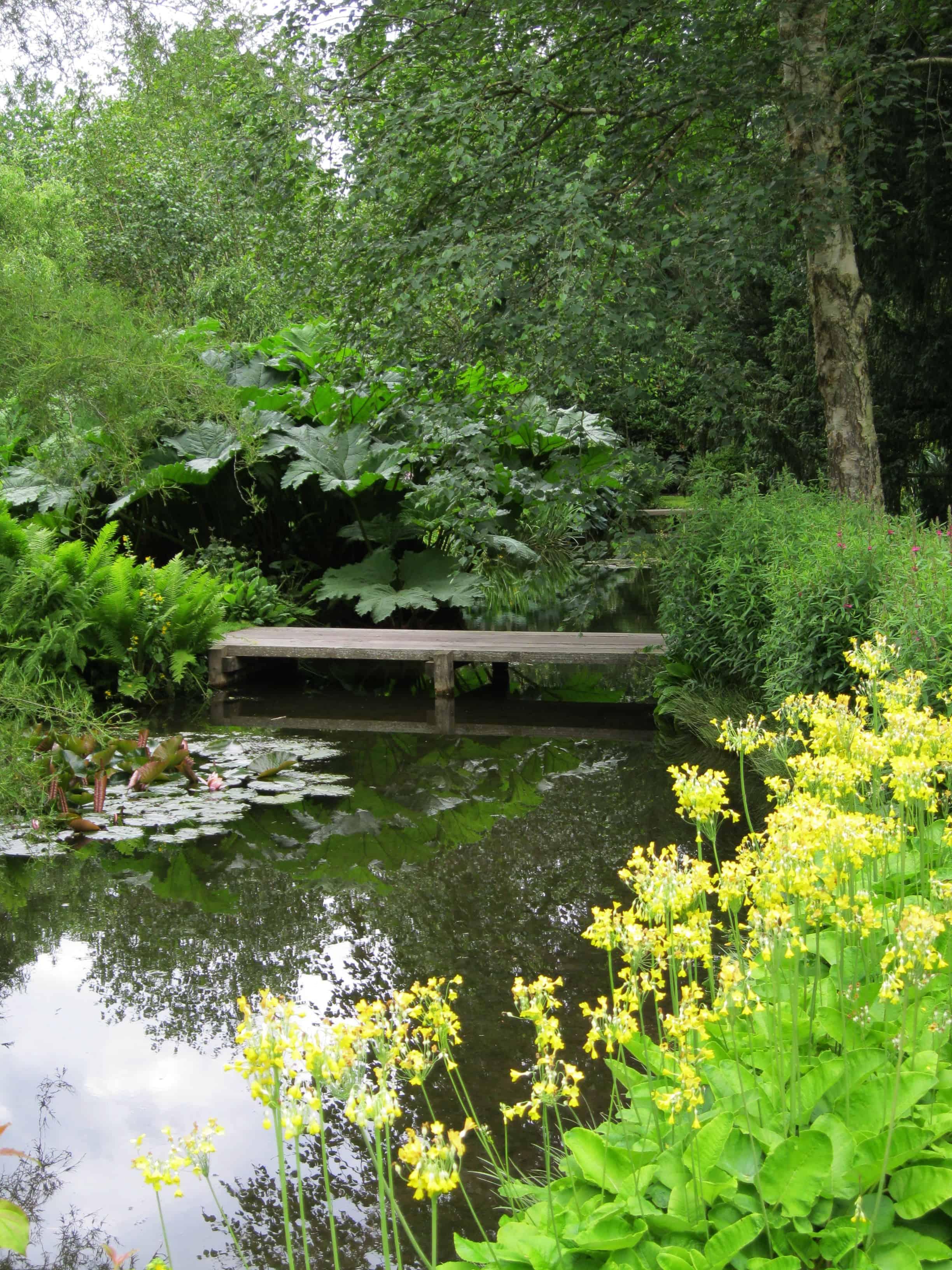 Longstock Water Garden Seeing Waitrose In A New Light The Garden Visitor