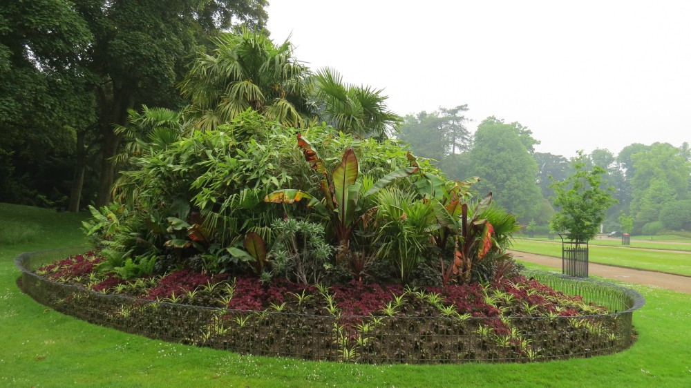 The Tropical Mound