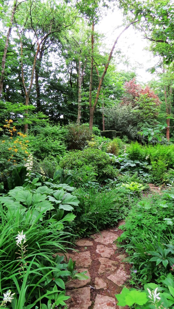 The Jeykll Water Garden