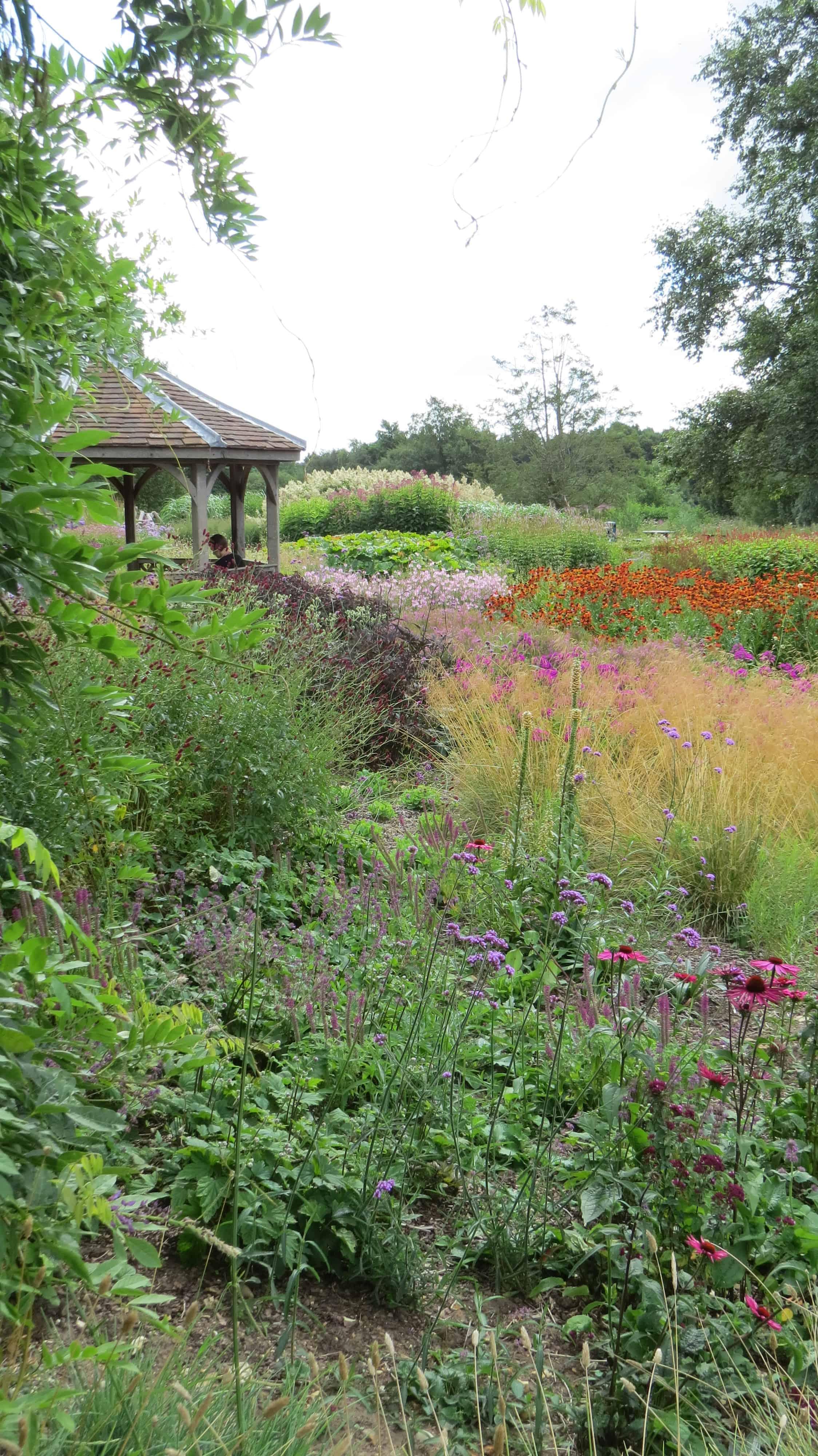Piet oudolf on pinterest private garden public garden for Piet oudolf private garden