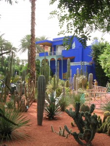 Cacti Garden and Studio