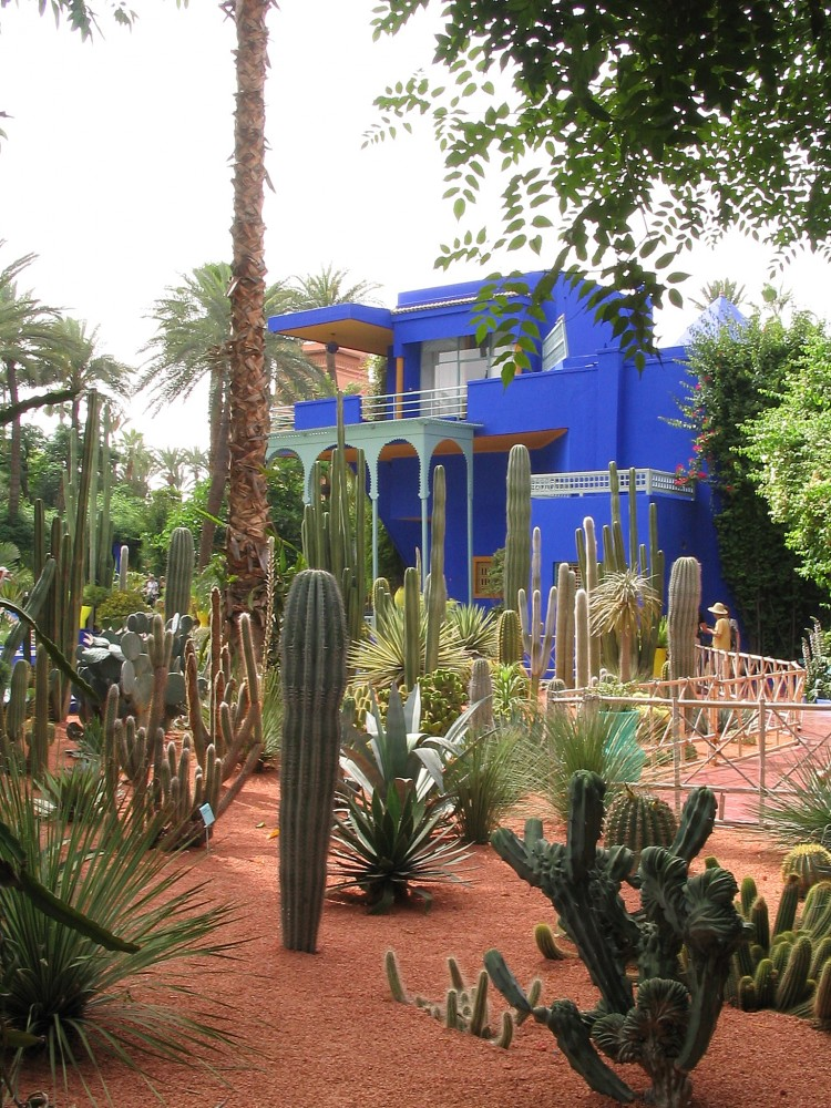 Cacti Garden and Studio