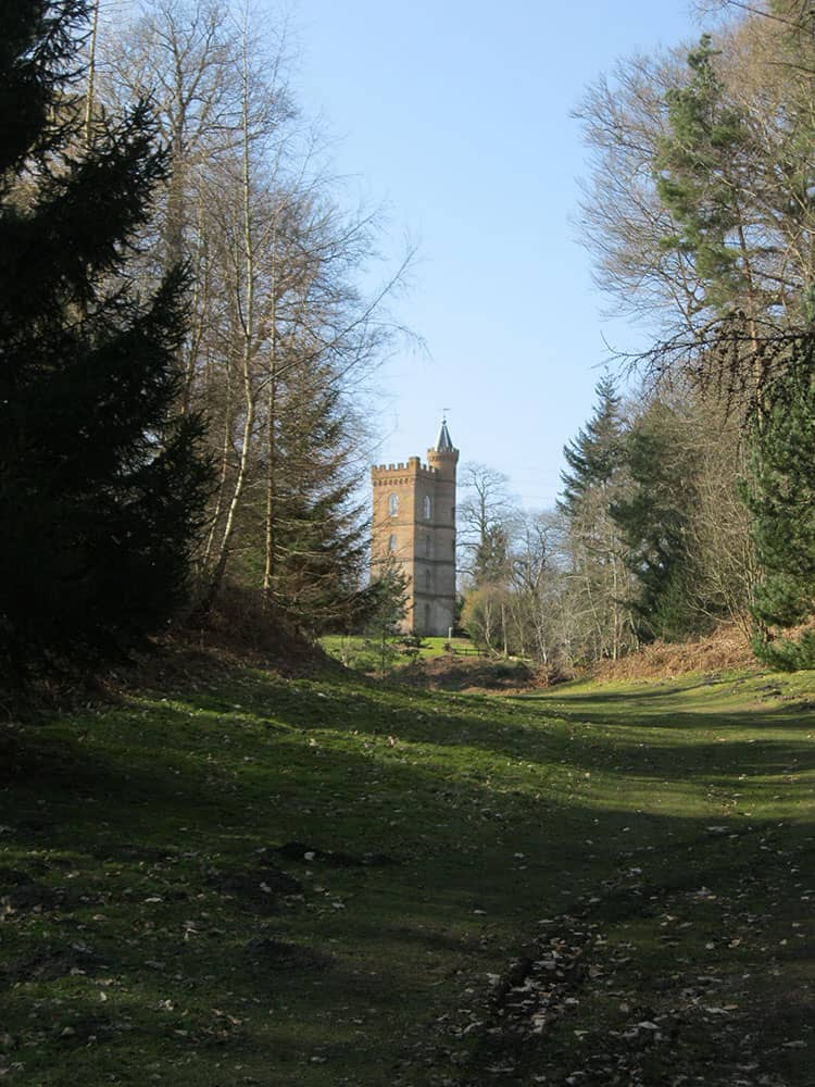 The Gothic Tower