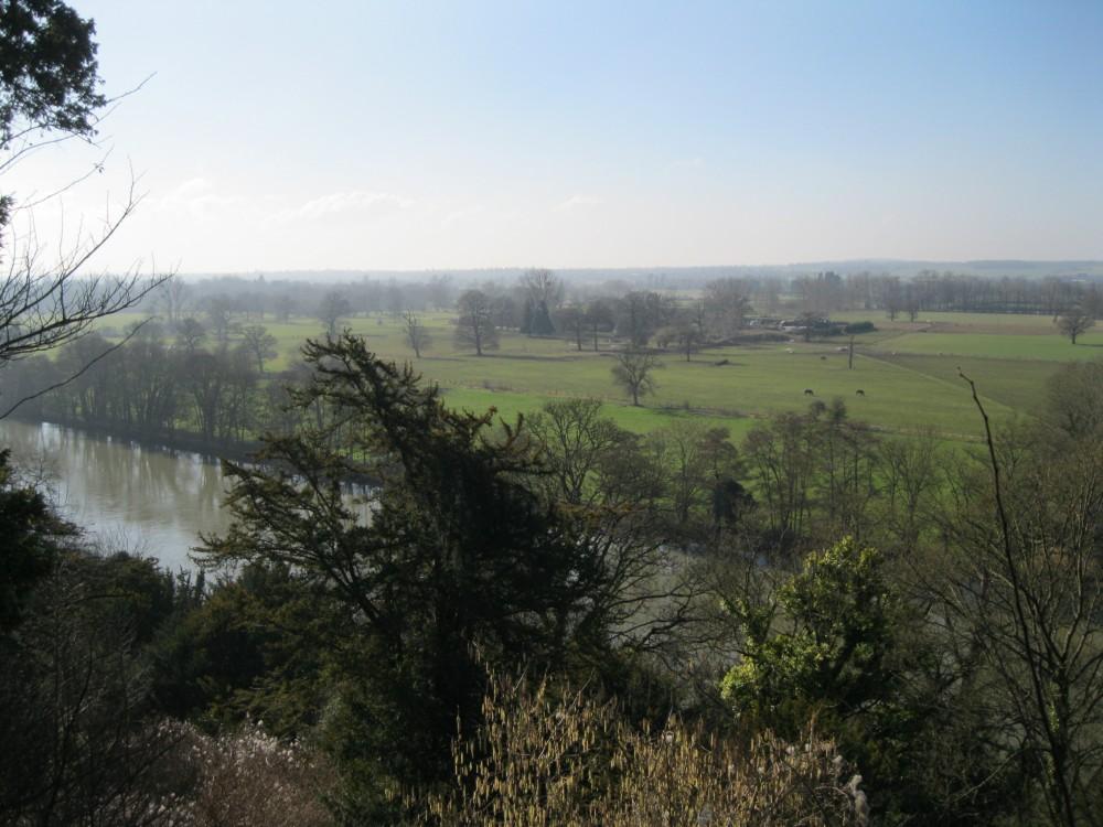 Cliveden Landscape