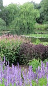Millennium Garden 4