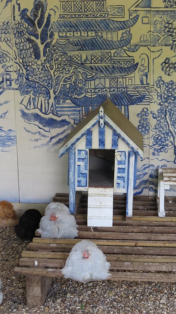 The Chicken Pavilion