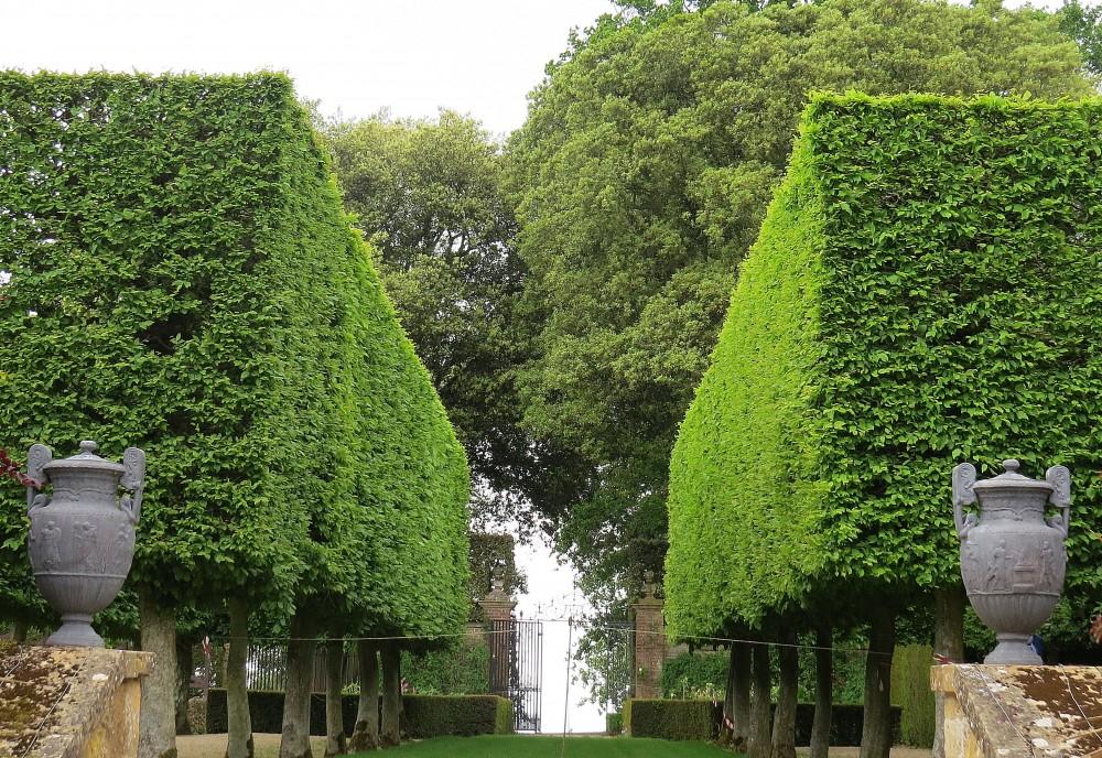 The Stilt Garden