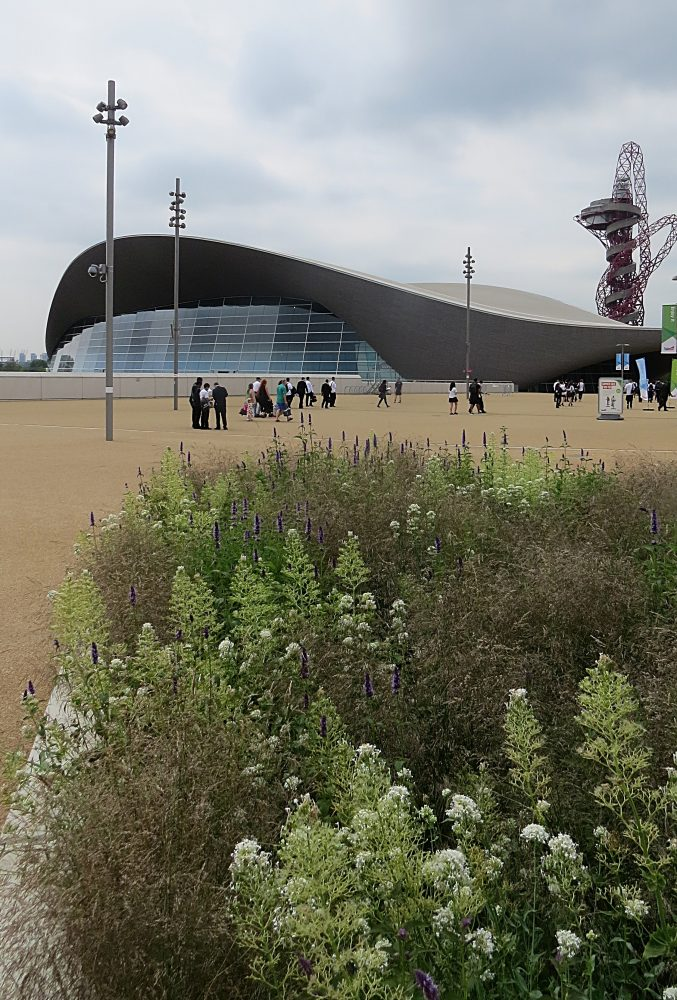 Looking across the Boulevard to the Aquatics Centre 2017