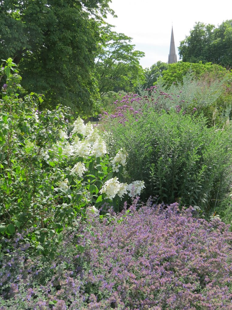 The Perennial Border