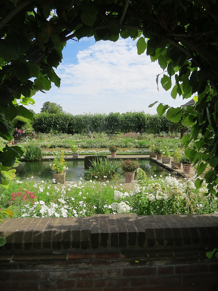 Window Overlooking the Sunken Garden