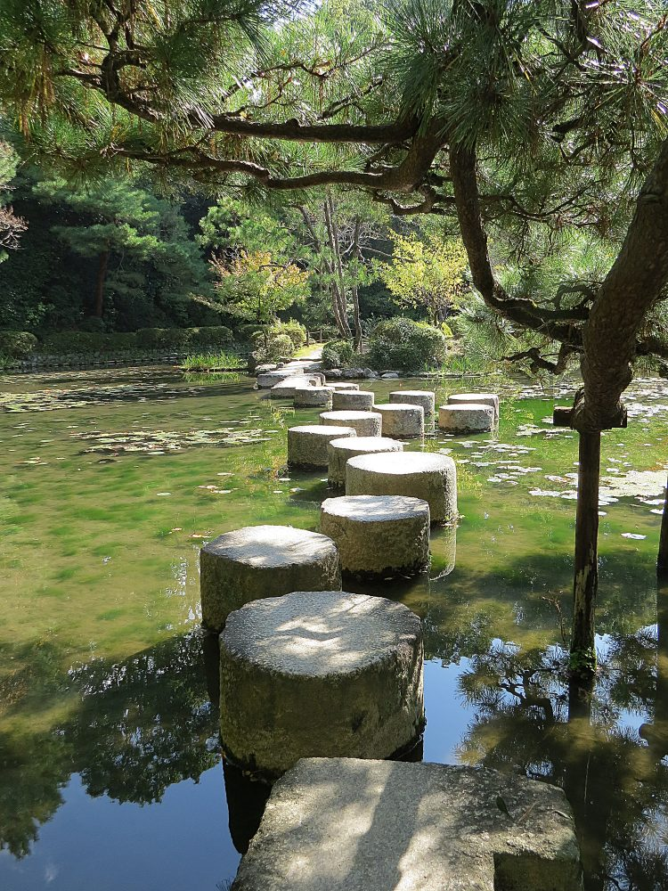 'Dragon's Tail' Stepping Stones