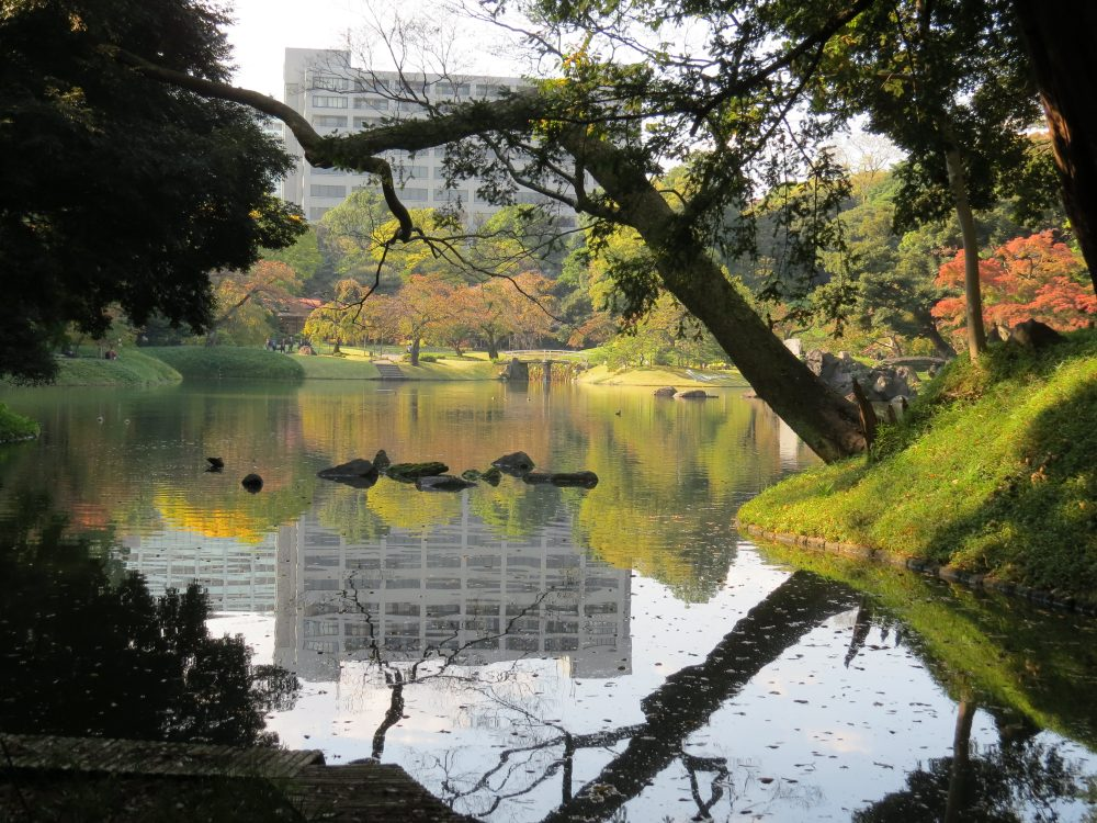 View over Pond (Dai-Sensui)