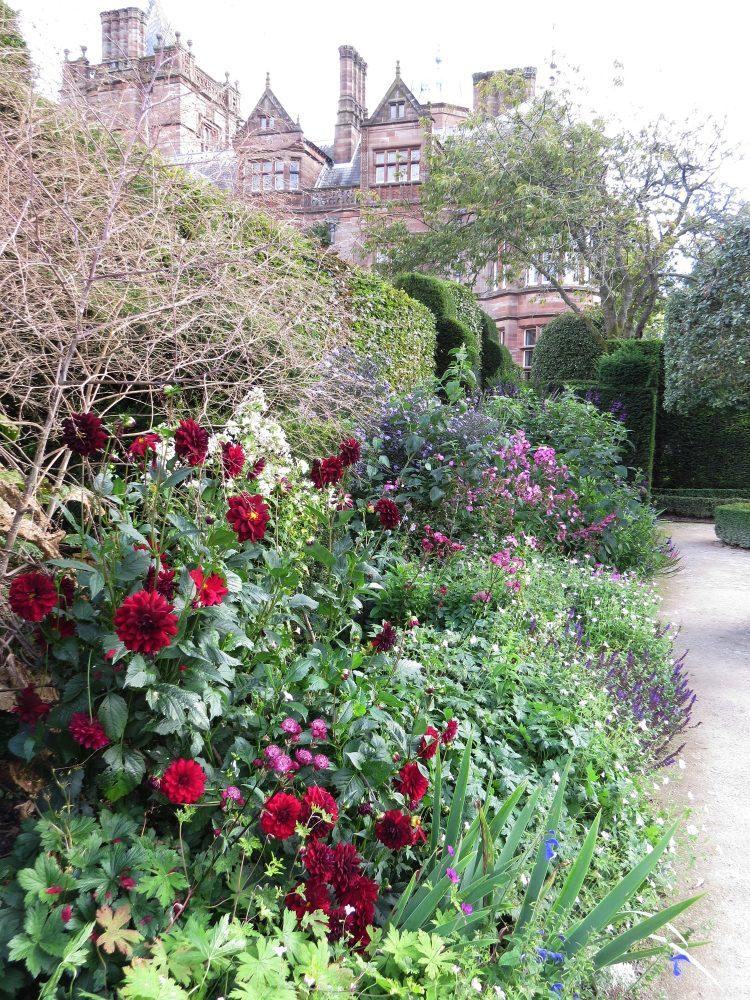 The Summer Garden – Herbaceous Border