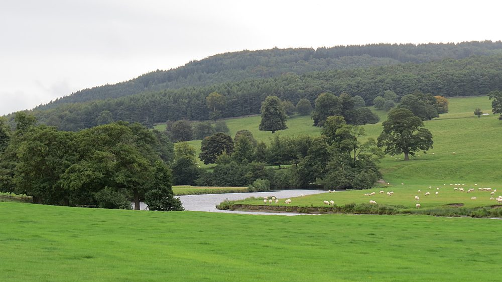 The Capability Brown Landscape