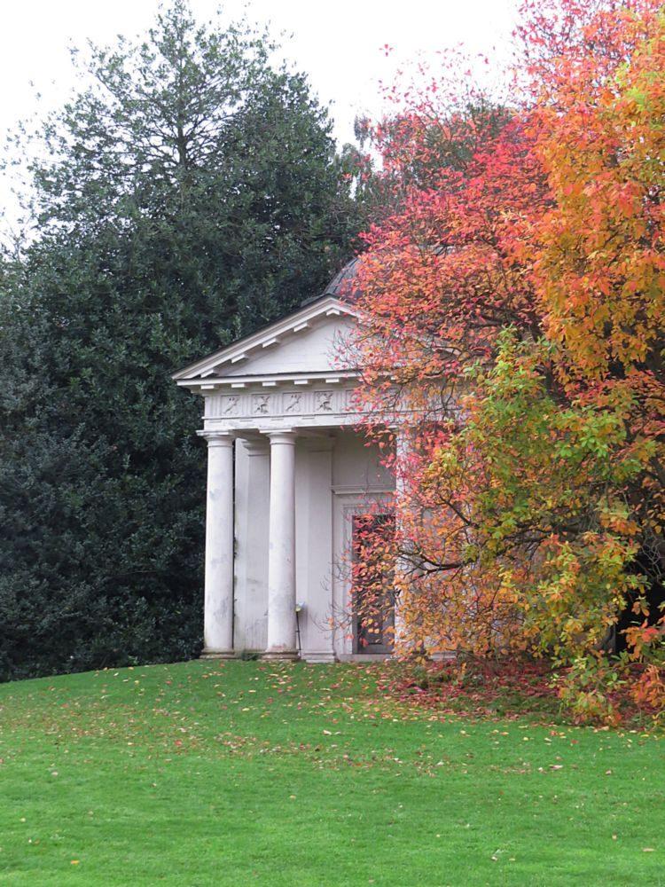 November – Autumn Colour and Berries in the Arboretum - Cherries, Acers, Pyrus, Sorbus and Liquidamber.