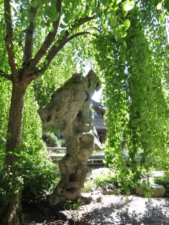 Sculptural Qualities of Taihu Rock