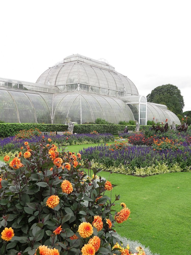 July – The Summer Bedding and also The Palm House
