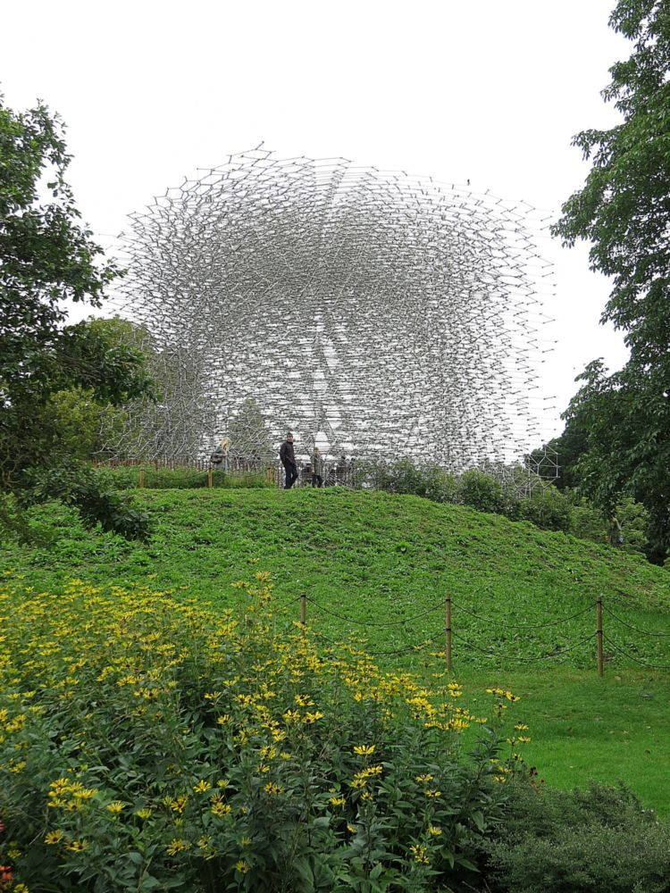 September – The Hive and also The Great Broad Walk Borders - Late Summer Perennials