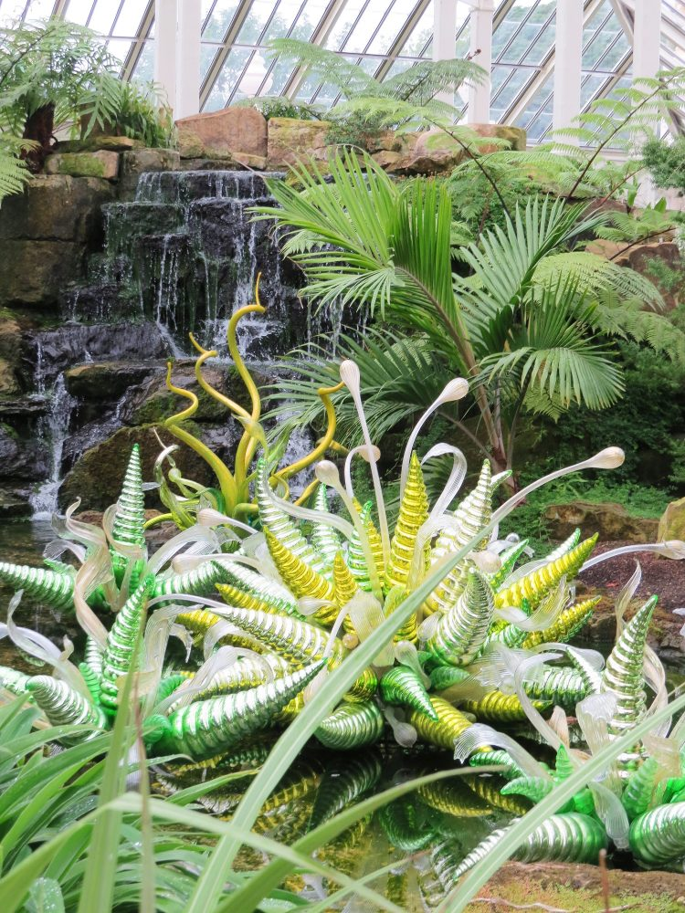 Planting and Chihuly Glass Pieces