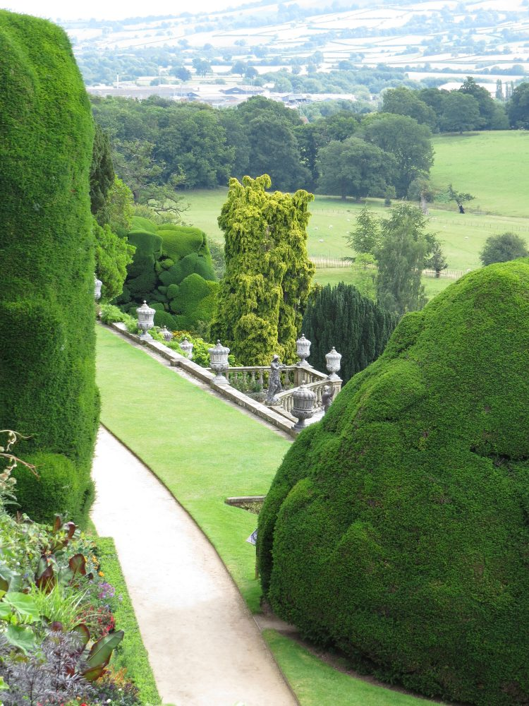 View over the Top Terrace